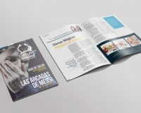 Revista Consulta Médica